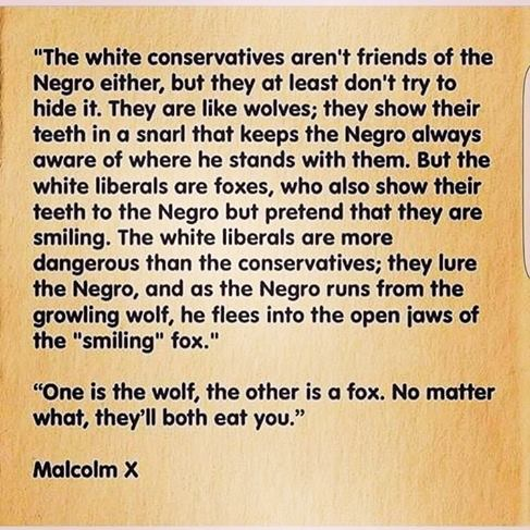 White liberals are more dangerous than the white conservatives - Malcom X - Malcom X